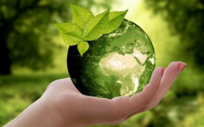 Kodeks dobrego mieszkańca Ziemi